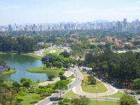 Plastic Surgery Brazil, Brazil, Dr Marco Longo, Sao Paulo, Plastic Surgeon Brazil,